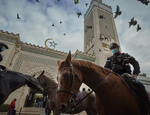 ماكرون يحقق حلم ساركوزي في تشتيت وحدة المسلمين