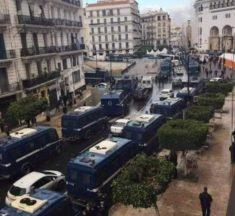 السلمية.. حماية للجزائر من سلطة مجنونة